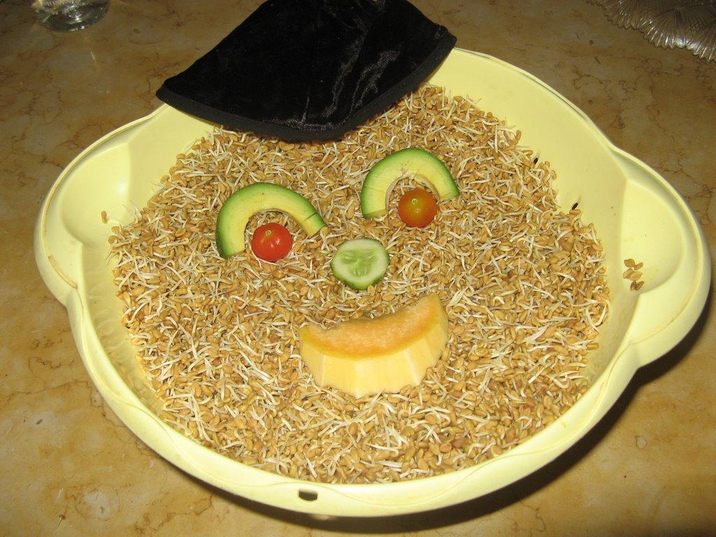 נבטי חילבה - לאיזון הסוכר