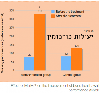יעילות כורכומין Meriva